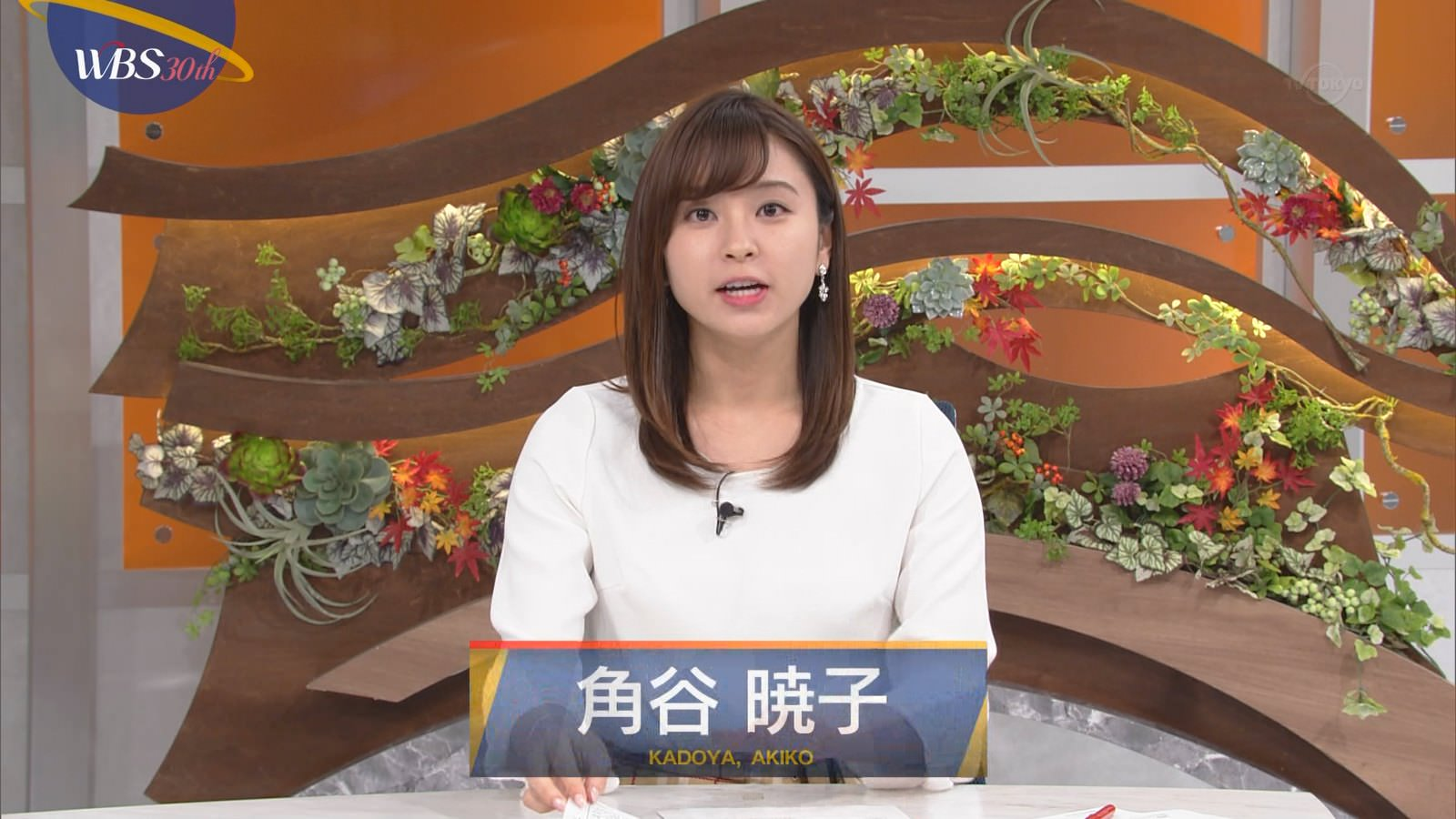 【画像】テレ東WBSで角谷暁子アナ、乳揺れ&谷間がチラって見えてしまうwww(GIFあり)